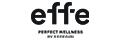 logo effegibi